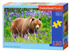 Puzzle Bear on the Meadow 120