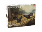 Puzzle Fighting Capercailles 1000