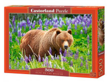 Puzzle Bear on the Meadow 500