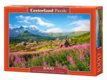 Puzzle Hala Gąsienicowa 1000