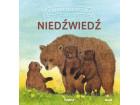Dzikie zwierzęta w naturze - niedźwiedź