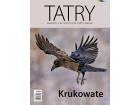 Tatry nr (68) 2/2019 – Krukowate